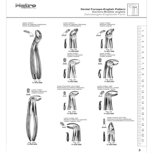 Dental Forceps - English Pattern
